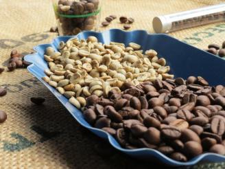 beneficios del cafe verde sin tostar