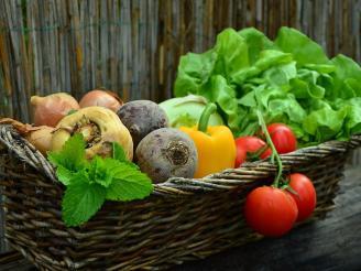 dietas terapéuticas