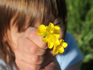 medicamentos homeopáticos para niños