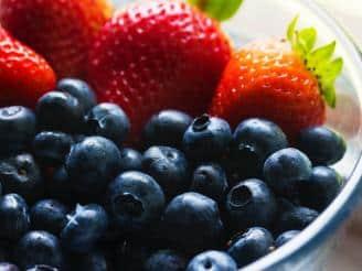 Nutrición en el cáncer y patologías relacionadas con el sistema inmunitario