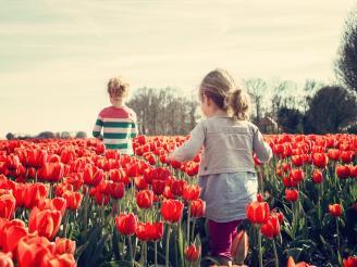 Uso de las flores de Bach para niños