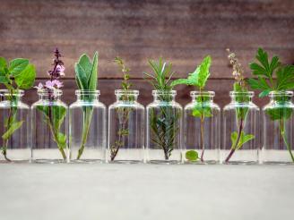 Naturopatia para alergías