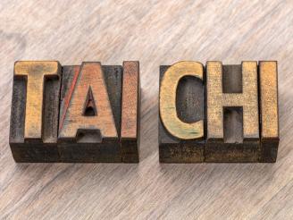Los 5 estilos del taichí chuan