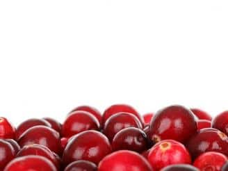 propiedades arandano rojo